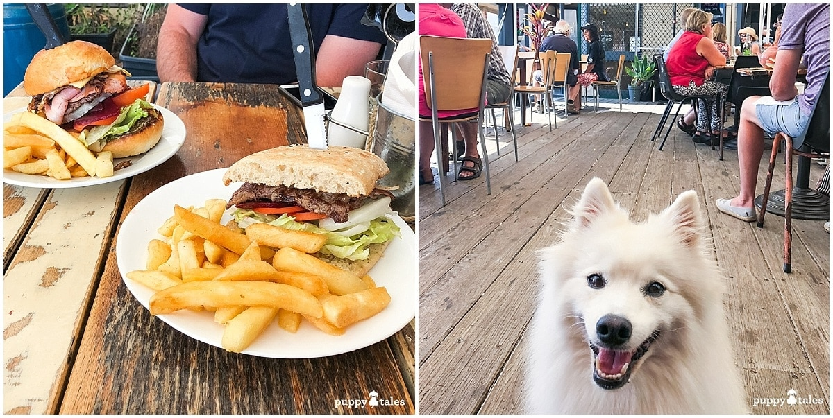 Bermi's Beachside Cafe Dog Friendly Cafes