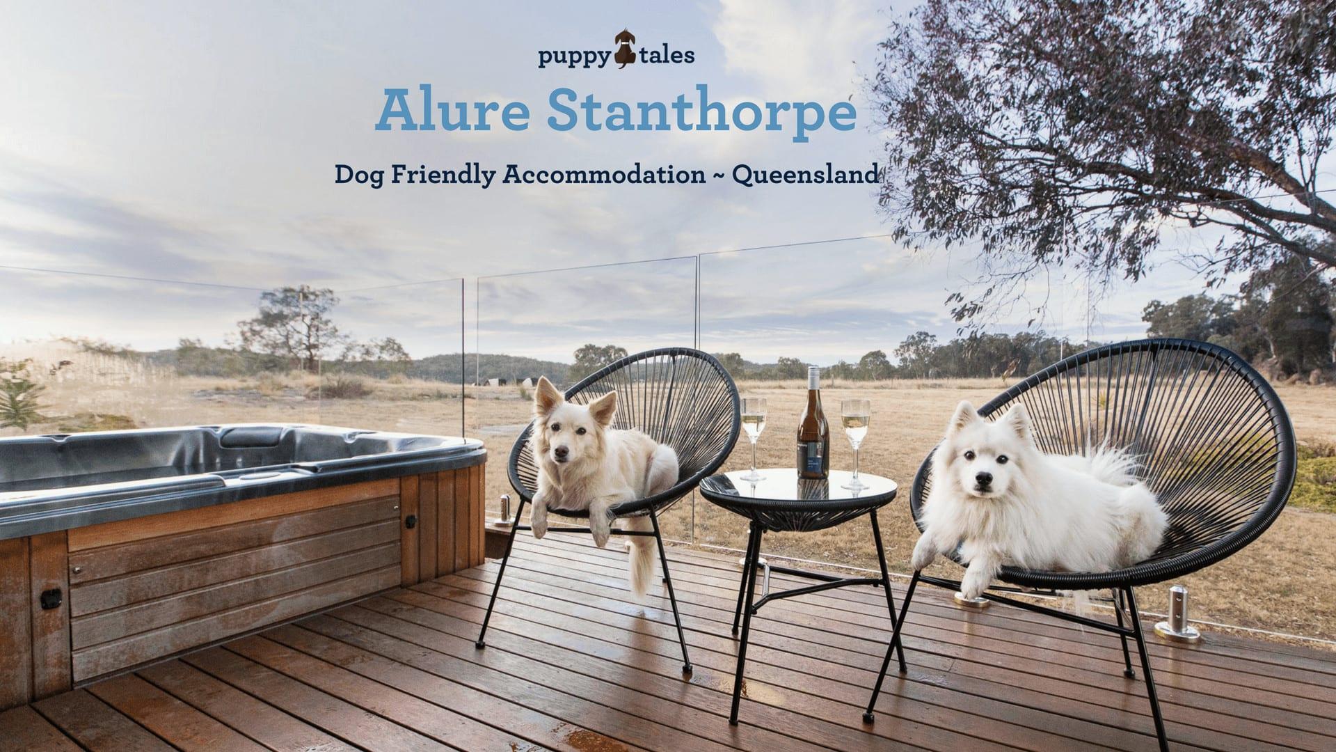 Alure Stanthorpe Dog Friendly Accomodation in Queensland