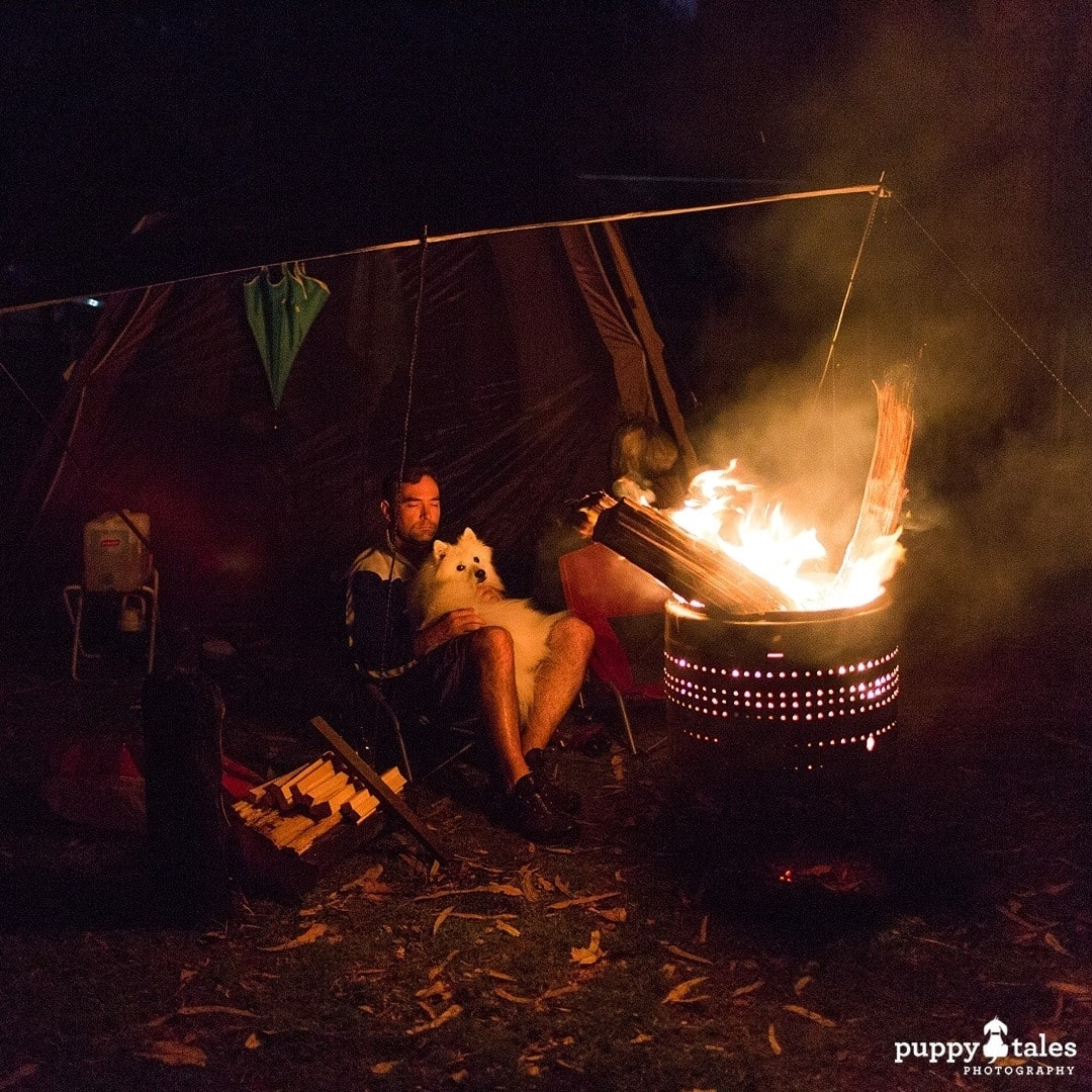 Pawsitive Travels With Dogs Adventure Hounds Camping
