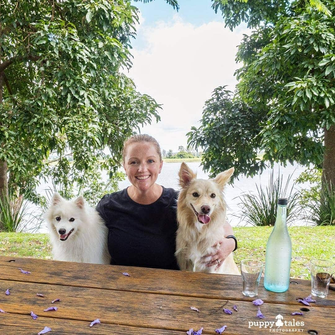 Pawsitive Travel With Dogs Dogs About Town Gourmet Experiences Eating Out