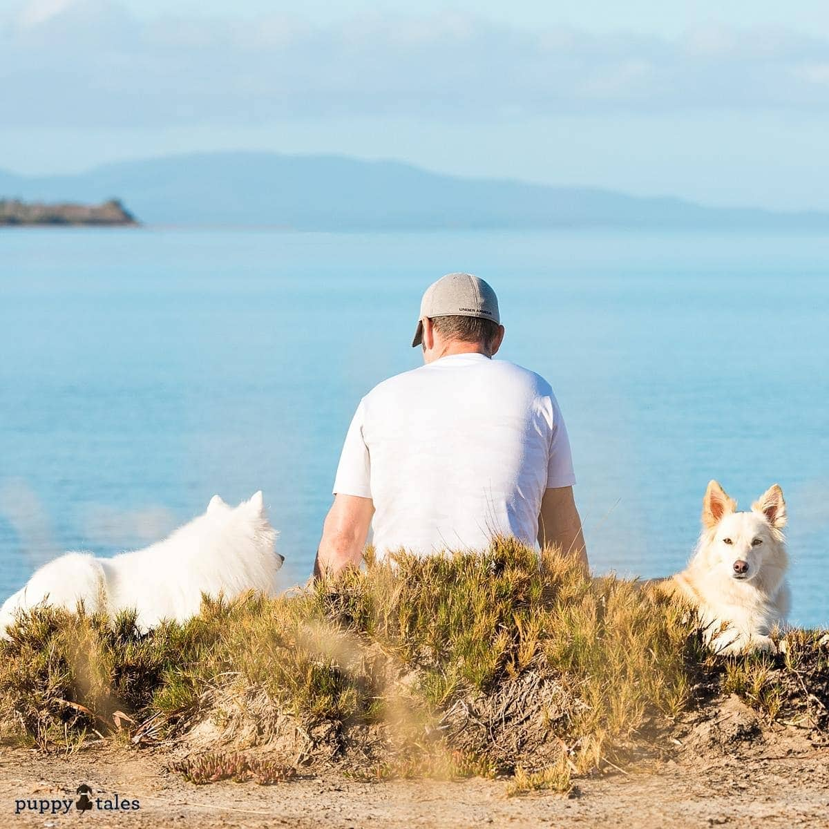 Pawsitive Travel With Dogs Adventure Hounds Fishing