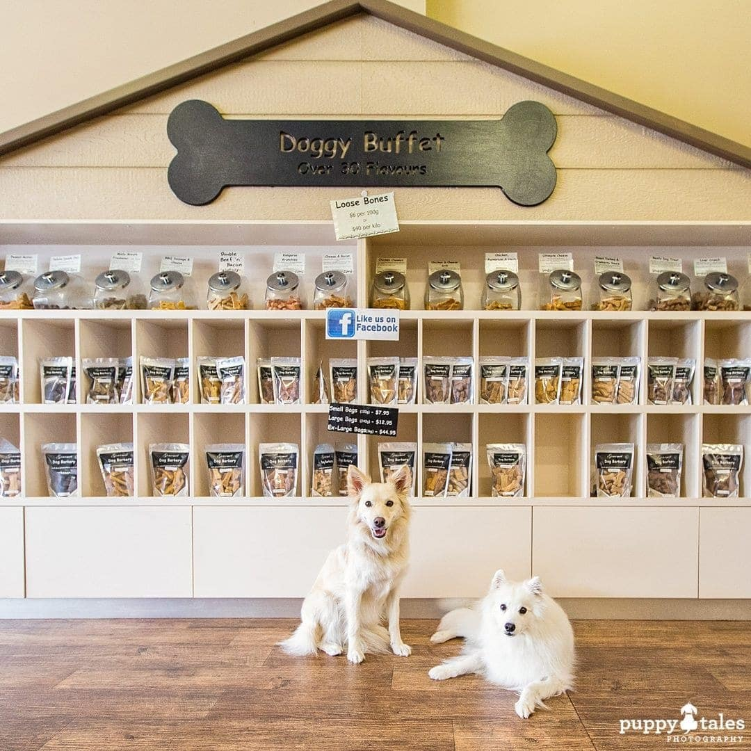 Pawsitive Travel With Dogs Gourmet Experiences