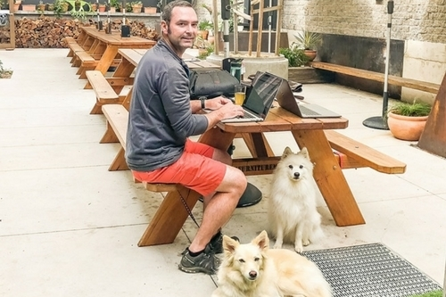Dog Friendly Cafes Canberra Feature