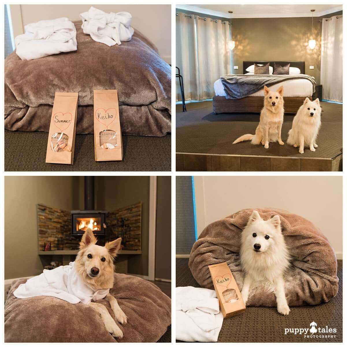 Alure Stanthorpe has one luxury spa villa that's dog friendly!