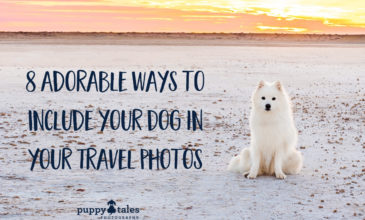 Puppy Tales Photography: 8 Adorable Ways to Include your Dog in your Travel Photos