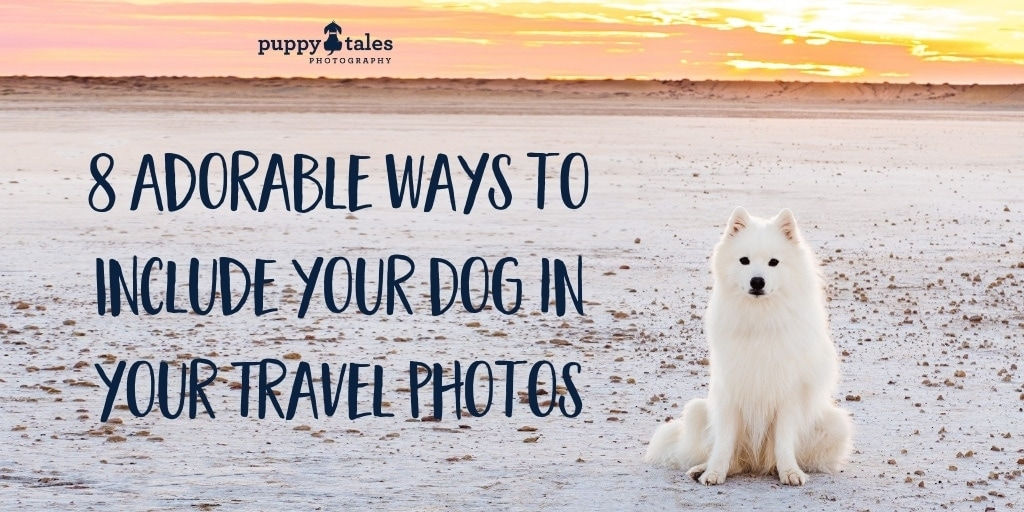 8 Adorable Ways to Include your Dog in your Travel Photos Title